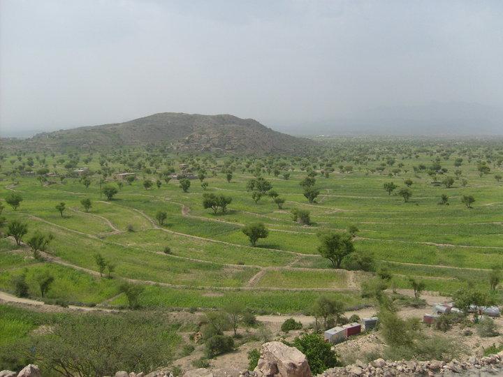 صورة من قرية جهيم -الهجر -القبيطة 28785_12