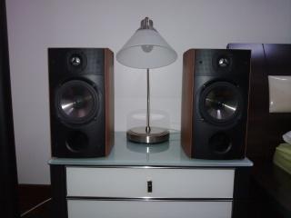 PSB Image B15 Bookshelf Speaker [SOLD]  11122010