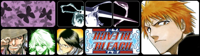 Bleach revolution of the soul.