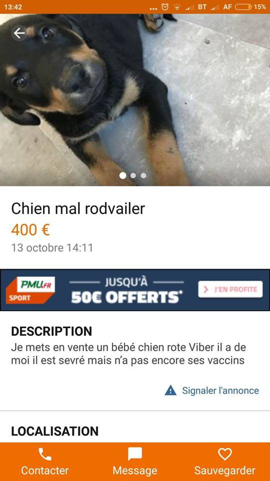 Le Rottweiler - Page 4 Rote_v10