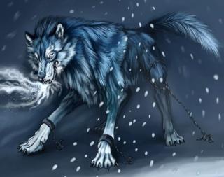 Fenrir , le loups des neiges  Fenrir13
