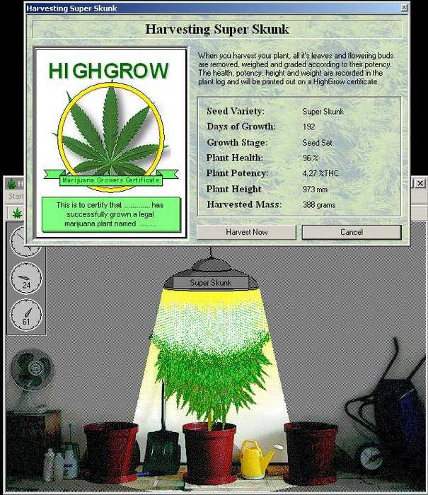 Simulador De Cultivo De Marihuana Super_10