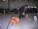 ЕВРАЗИЯ 2011 Img_5811