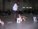 ЕВРАЗИЯ 2011 Img_5819