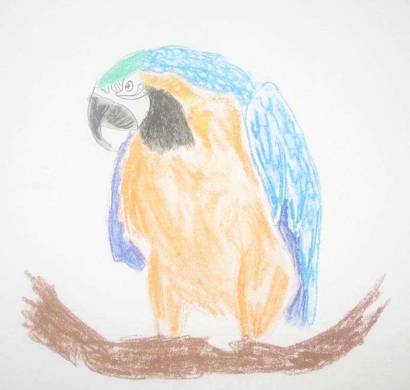 Réalise dessin, portrait, retouche photo Img_9512