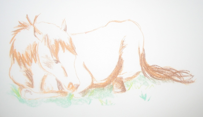 Réalise dessin, portrait, retouche photo Img_9517