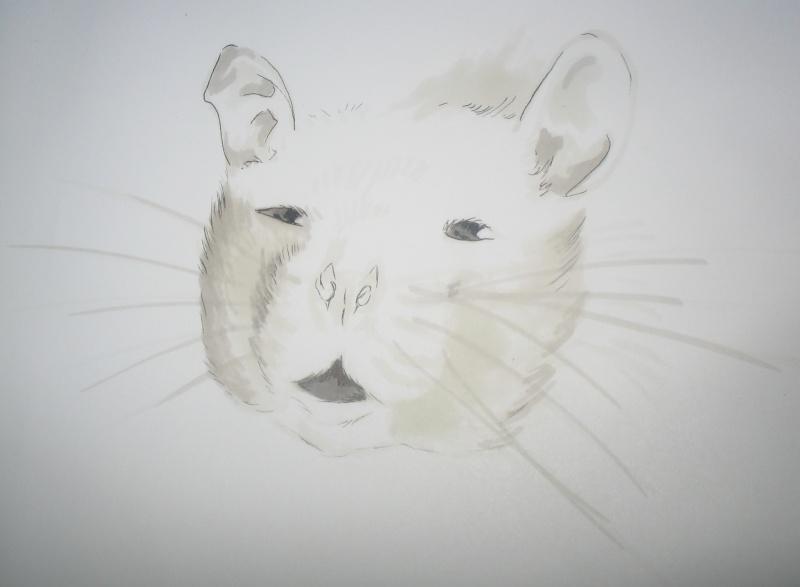 Réalise dessin, portrait, retouche photo Img_9612