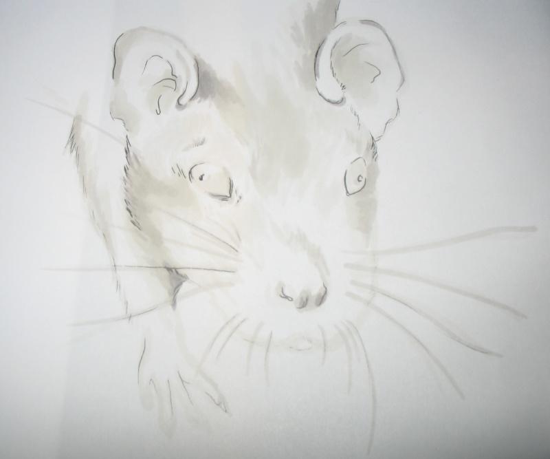 Réalise dessin, portrait, retouche photo Img_9613