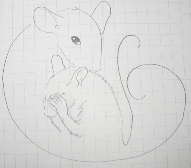 Réalise dessin, portrait, retouche photo Img_9619