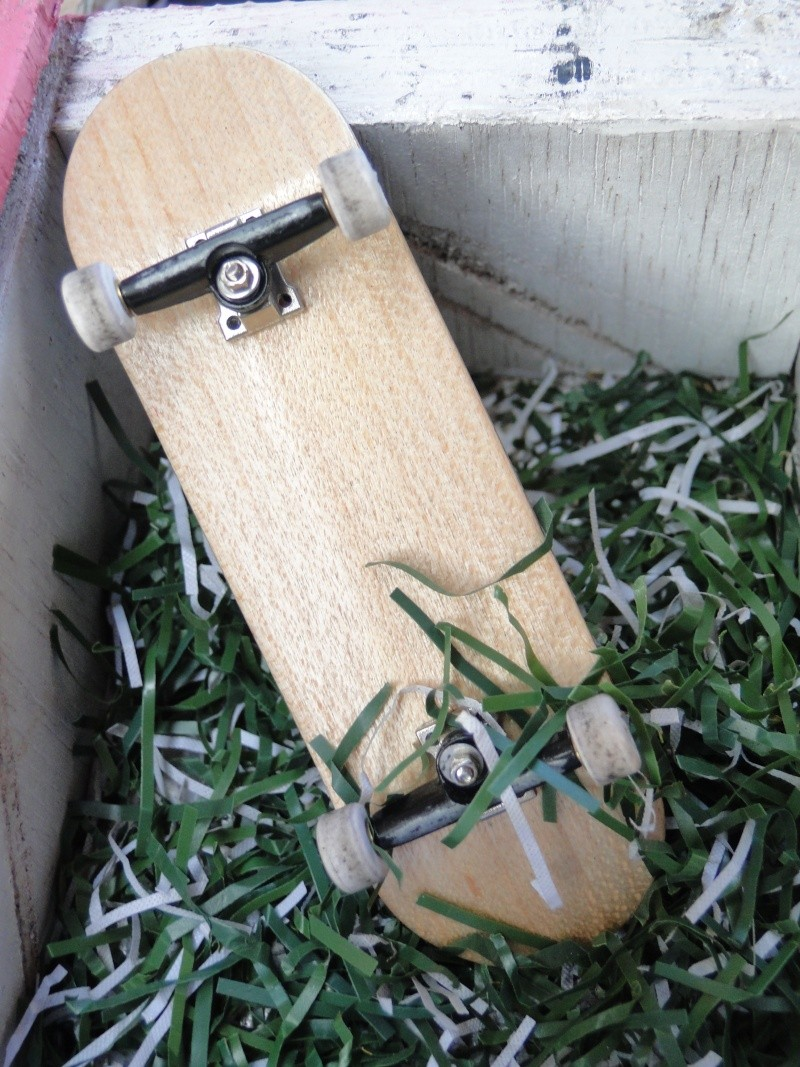 your fingerboard set-up Dsc06610