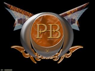 PATRICK BONNIFET (STEEL ANGEL) Logo_b11