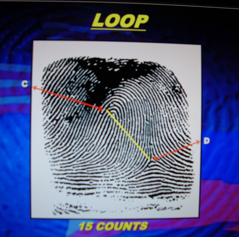 X - WALT DISNEY - One of his fingerprints shows an unusual characteristic! - Page 23 Dsc08113