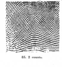 X - WALT DISNEY - One of his fingerprints shows an unusual characteristic! - Page 22 Fig08410