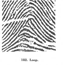 X - WALT DISNEY - One of his fingerprints shows an unusual characteristic! - Page 22 Fig18210