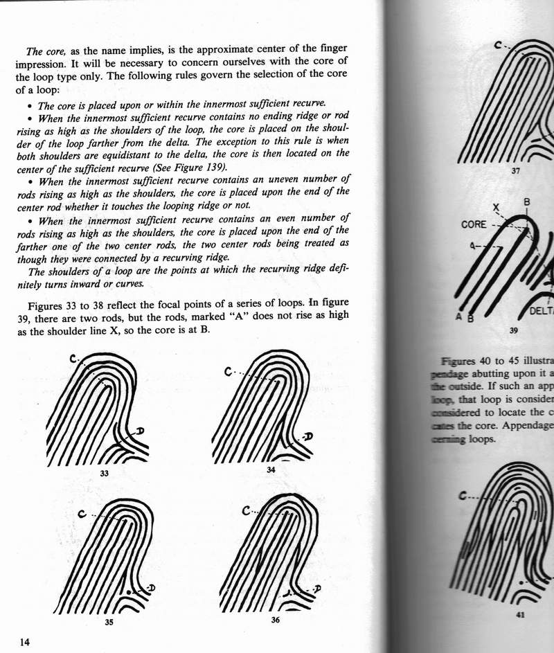 X - WALT DISNEY - One of his fingerprints shows an unusual characteristic! - Page 10 Rebutt13