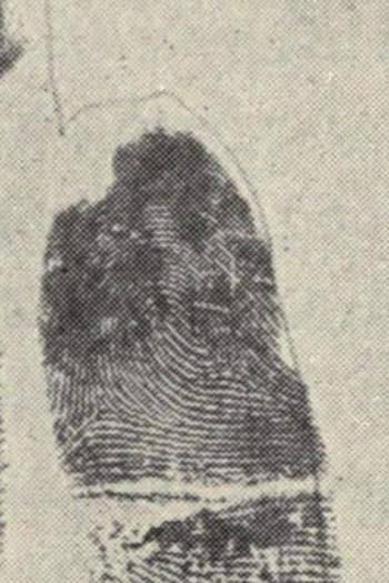 X - WALT DISNEY - One of his fingerprints shows an unusual characteristic! - Page 21 Right_13