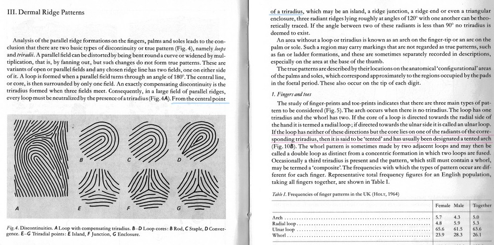 X - WALT DISNEY - One of his fingerprints shows an unusual characteristic! - Page 19 Should10