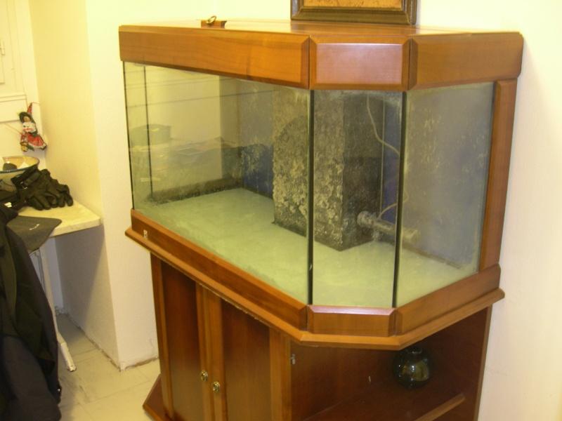 nouvel aquarium eau de mer Dscn1510
