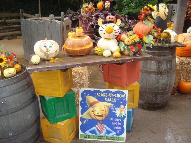 [Disneyland Resort] 17 au 19 octobre 2010 + l'Ouest américain Dsc08917