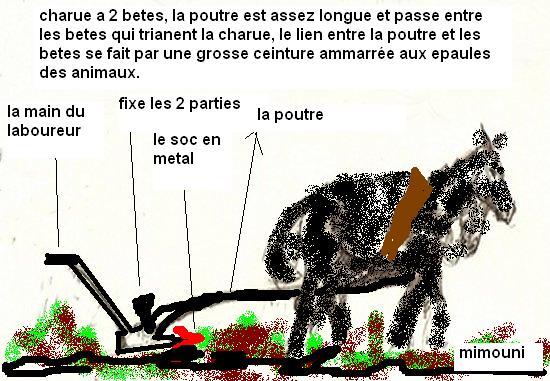 Livre  Photo - Le Passé Agricole d'Ouled Mimoun Mimoun15