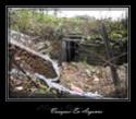 Forêt de Verdun et d'Argonne Dscf0617