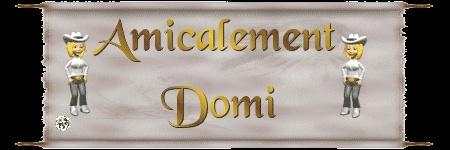 """""""Domi Domi"""" le site de notre amie Domi 10092810"""