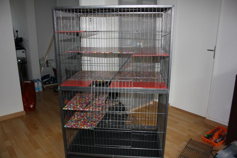 Vends grande cage en métal (54) Img_3910