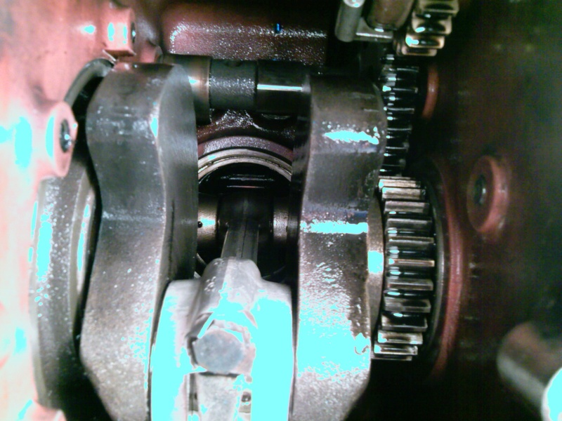 1030 -   1030 MOTOSTANDARD  GUTBROD SUPERIOR 16   REVISION DES 50 ANS  Photo165