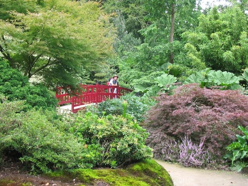 Jardins en Bretagne Img_0210
