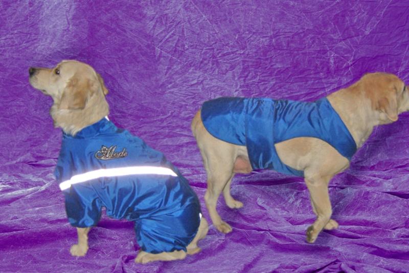 Модели собачей одежды. 510