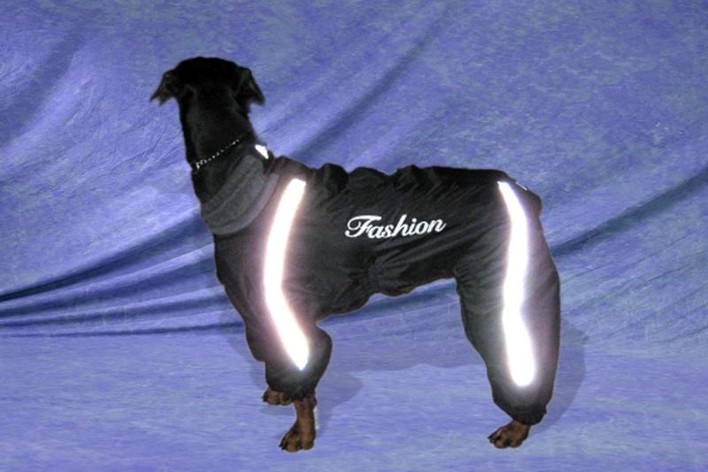 Модели собачей одежды. 710