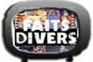 Forum des sciences de la vie et de la Terre Divers10
