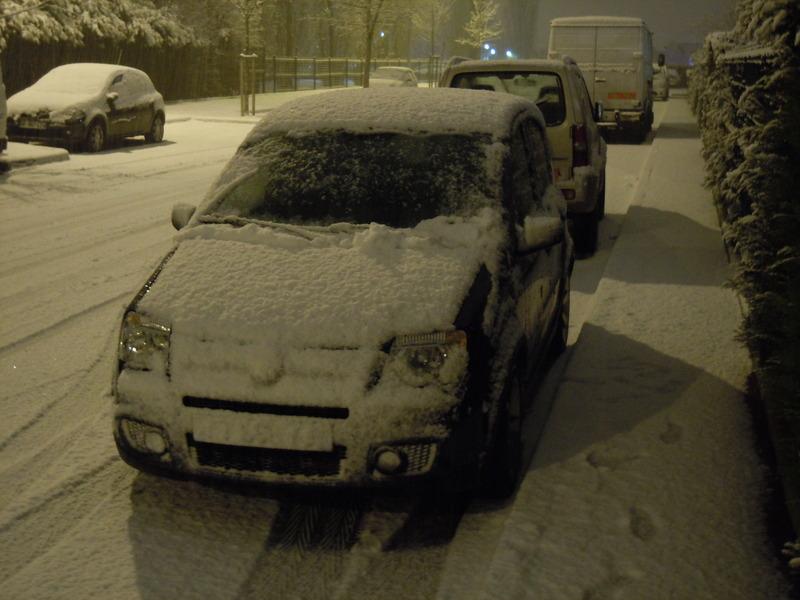 La Panda et l'hiver (photos) Dscn1010