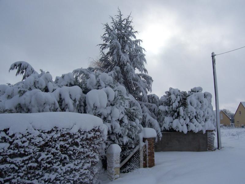 Poster vos images : La france envahie par la neige 100_6811