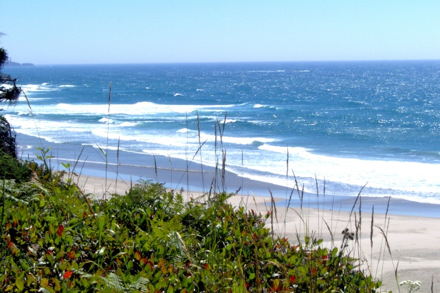 Beach Pictures... Ev_els11