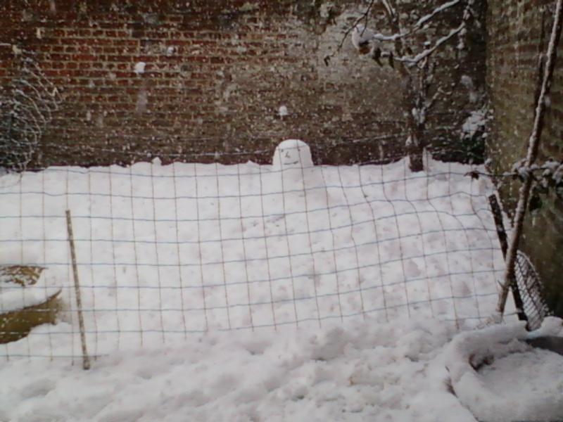 Poster vos images : La france envahie par la neige Photo-10