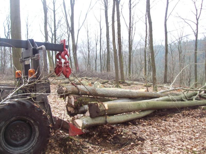 plus que quelques bricoles et en route dans le bois - Page 2 00210