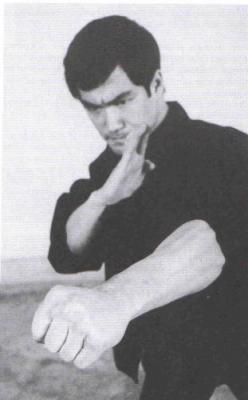 Les arts martiaux dans Gunnm Bruce10