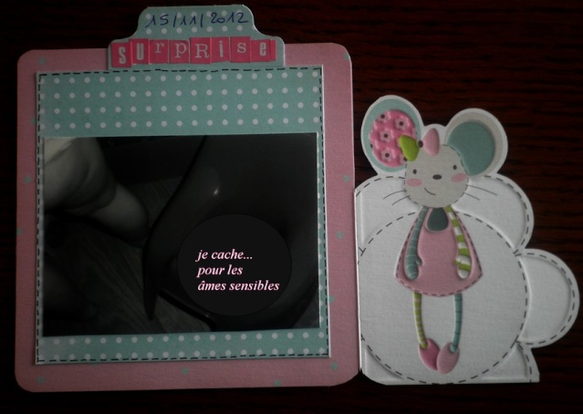 "*FAMILY DIARY 2012"" de Ckarine * MAJ 29/09/13  - Page 6 Fd_pot17"