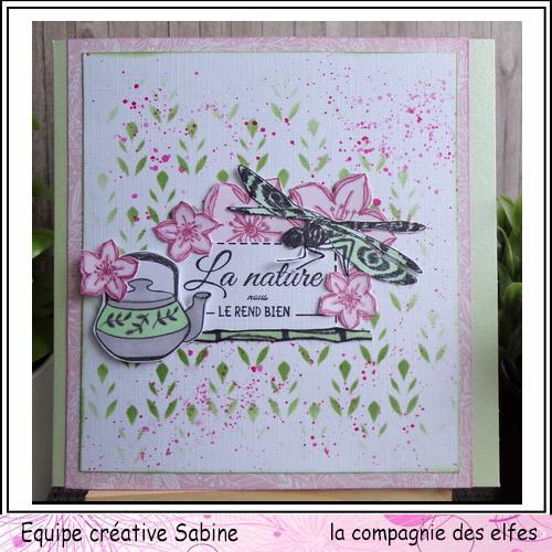 Cartes libellule 3/3 Sabin120
