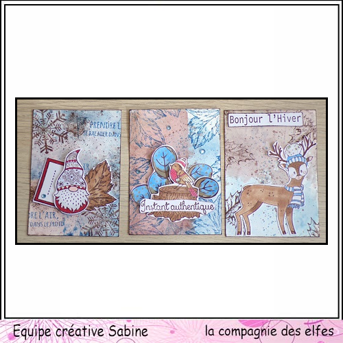 le 18 novembre rappel challenge mensuel Sabine47