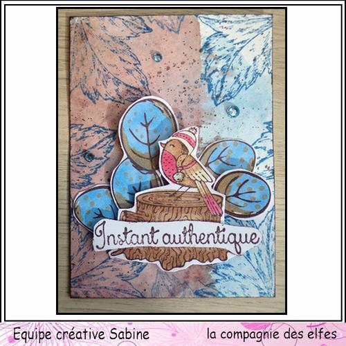le 18 novembre rappel challenge mensuel Sabine48