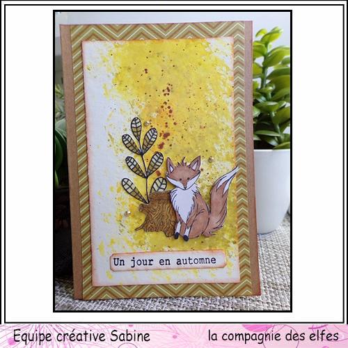 renard 3/3 Sabine63