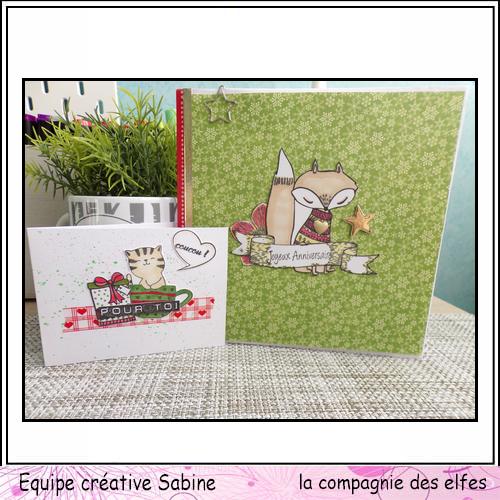 Cartes enveloppes surprises Sabine86