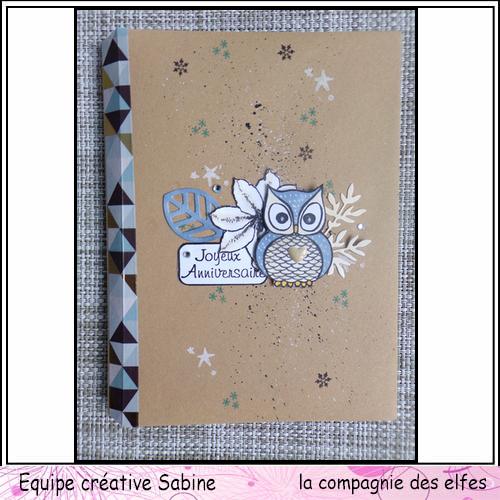 Cartes enveloppes surprises Sabine87