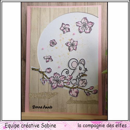 Cartes de Février 2020 Sabine96
