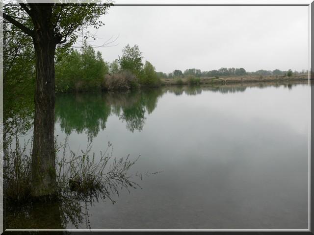 Pesca Cazouls 2.04.2011 C410