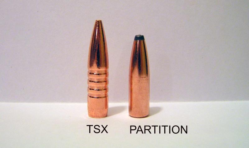 Resultat des boulets Barnes TTSX en reload Bullet10