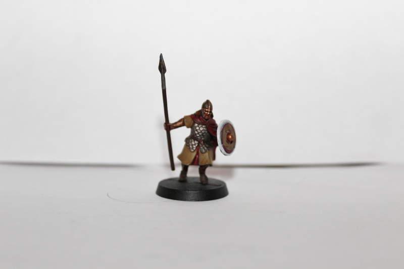 Galerie dadou91 [Rohan, Gondor, Fiefs] Img_0219