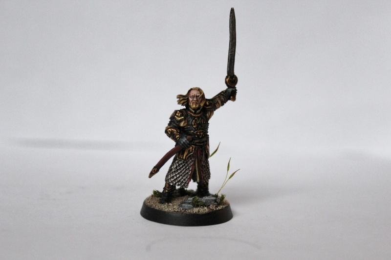 Galerie dadou91 [Rohan, Gondor, Fiefs] Img_0312